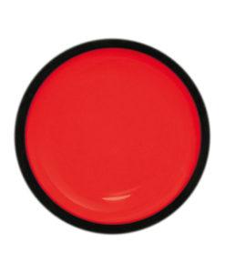 iZ979-Cherry Pachion